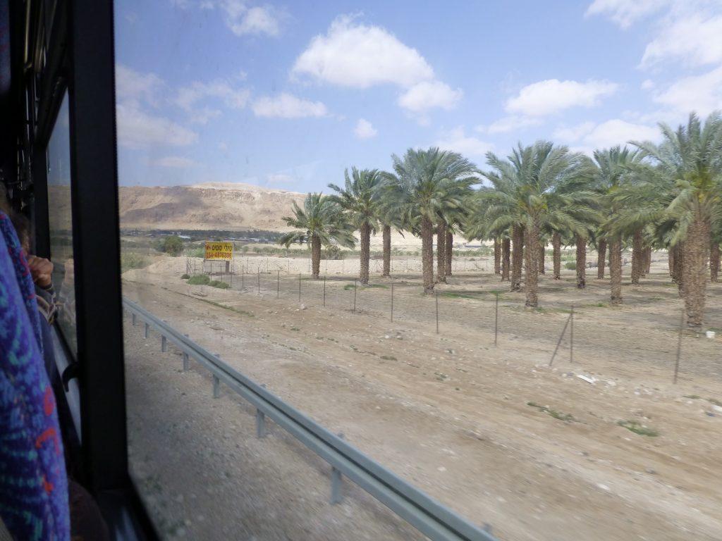 Aus dem Busfenster heraus, zwischen Jerusalem und Totem See. Israel 2013