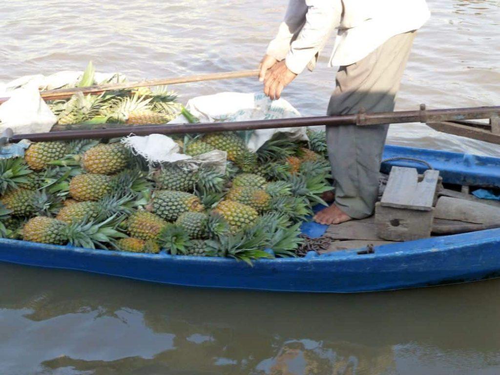 Ananas. Schwimmende Märkte. 2014 Südliches Vietnam