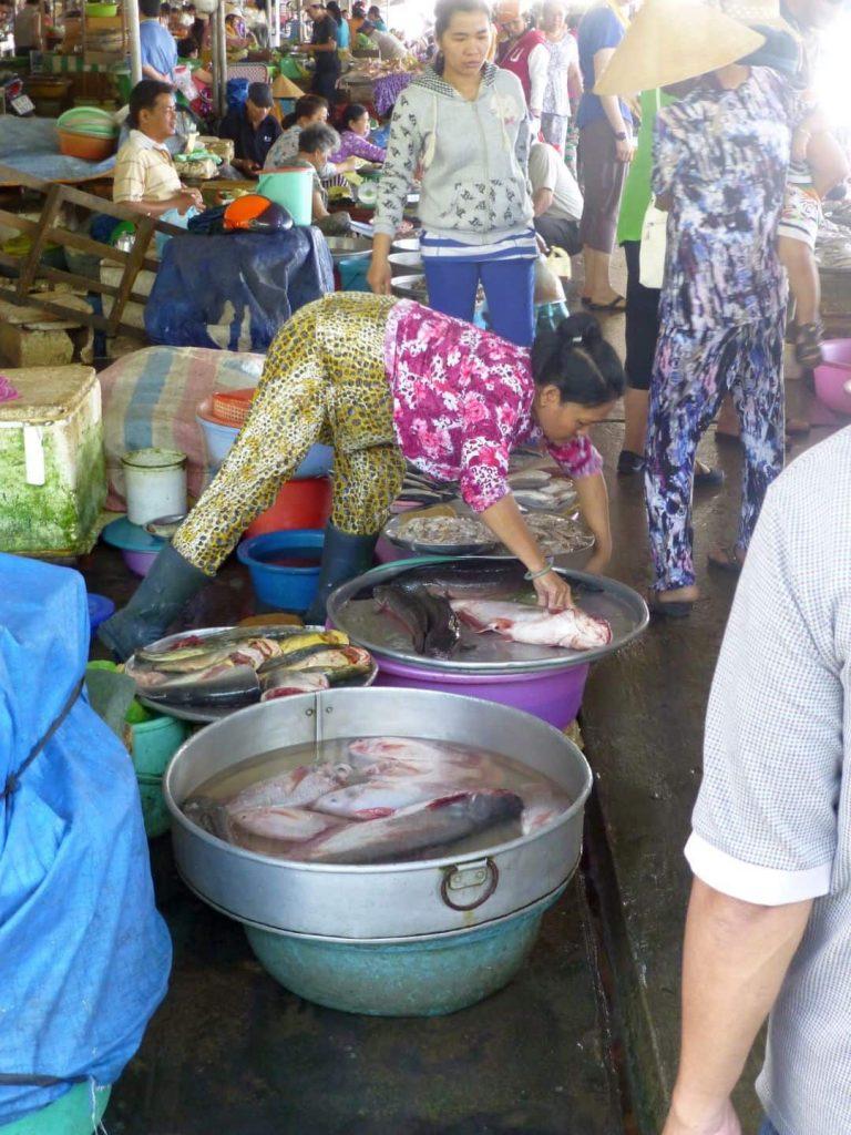 Schwimmende Märkte: Lebende Fische. Südvietnam. 2014