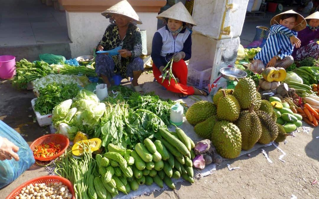Reise nach Vietnam, 2014